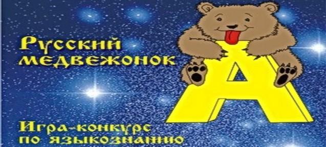 Конкурса русский медвежонок языкознание для всех